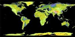 La nuova mappa Topografica del Globo