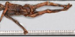 Iceman - la mummia dei Oetzi è on-line