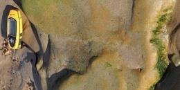 In Scozia è stata trovata la prima impronta continentale di dinosauro